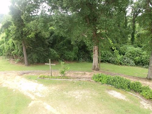Clean_landscaping.JPG